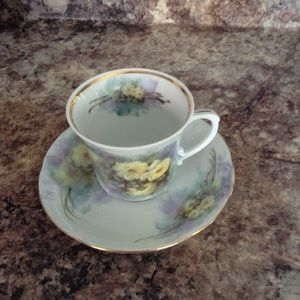 Chodziez Poland Cup & Saucer Roses Hand Painted